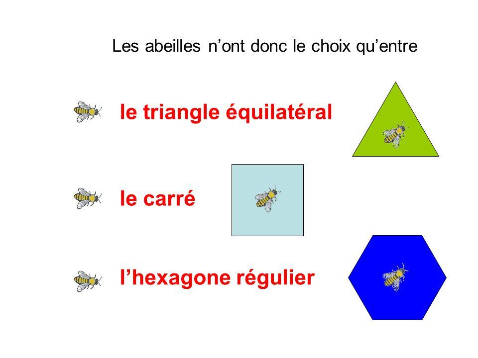 Les abeilles n'ont donc le choix qu'entre le triangle équilatéral le carré l'hexagone régulier