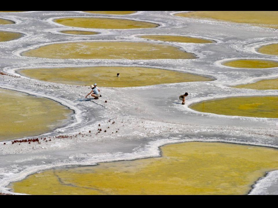 Situé entre la province canadienne de la Colombie Britannique et l'état américain de Washington, l'eau du lac moucheté présente des ressources minéral