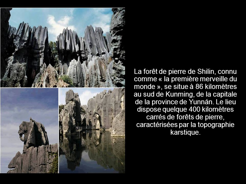 8. La forêt de pierre (Chine)