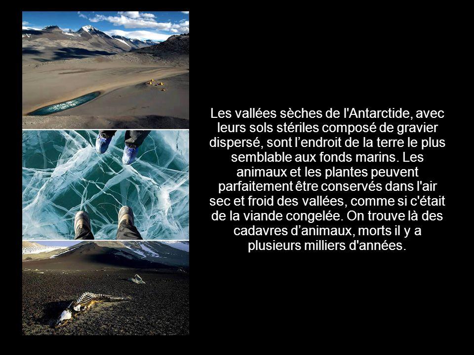 1.Vallées séches (Antarctide)