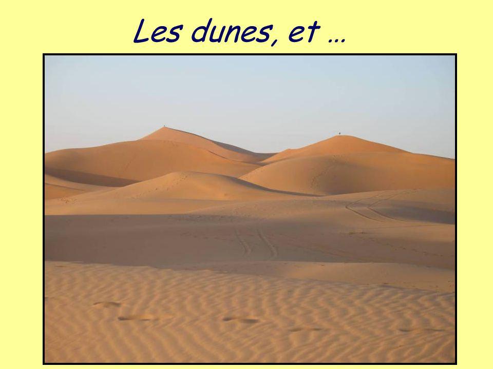 Les dunes, et …