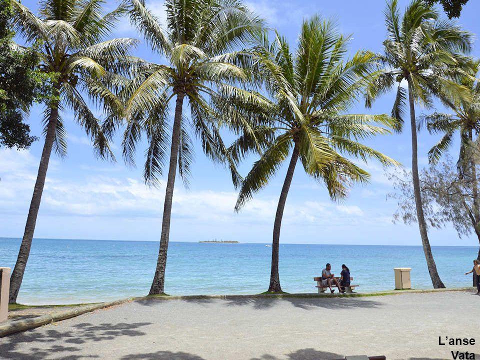 Des camelots le long de l'anse Vata à Nouméa.