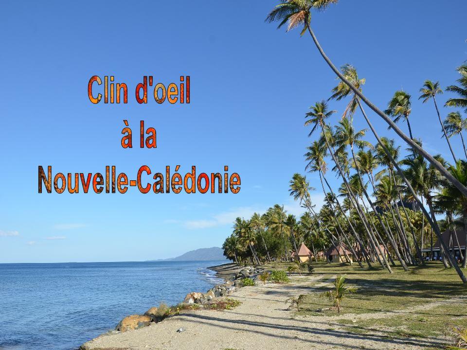 La place des Cocotiers est le véritable cœur de la ville.