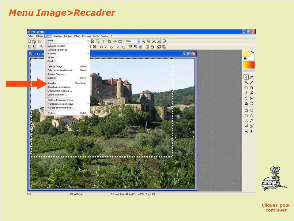 POUR RECADRER CETTE PHOTO: • En maintenant le clic gauche, sélectionnez la zone de l'image à conserver, en traçant un rectangle.