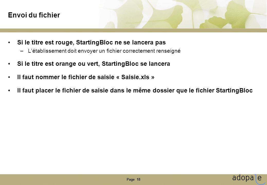 Page 18 Envoi du fichier •Si le titre est rouge, StartingBloc ne se lancera pas –L'établissement doit envoyer un fichier correctement renseigné •Si le titre est orange ou vert, StartingBloc se lancera •Il faut nommer le fichier de saisie « Saisie.xls » •Il faut placer le fichier de saisie dans le même dossier que le fichier StartingBloc