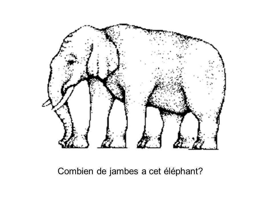 Combien de jambes a cet éléphant?