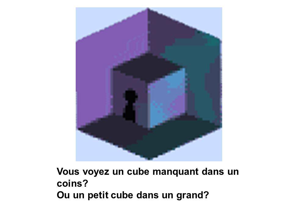 Vous voyez un cube manquant dans un coins? Ou un petit cube dans un grand?