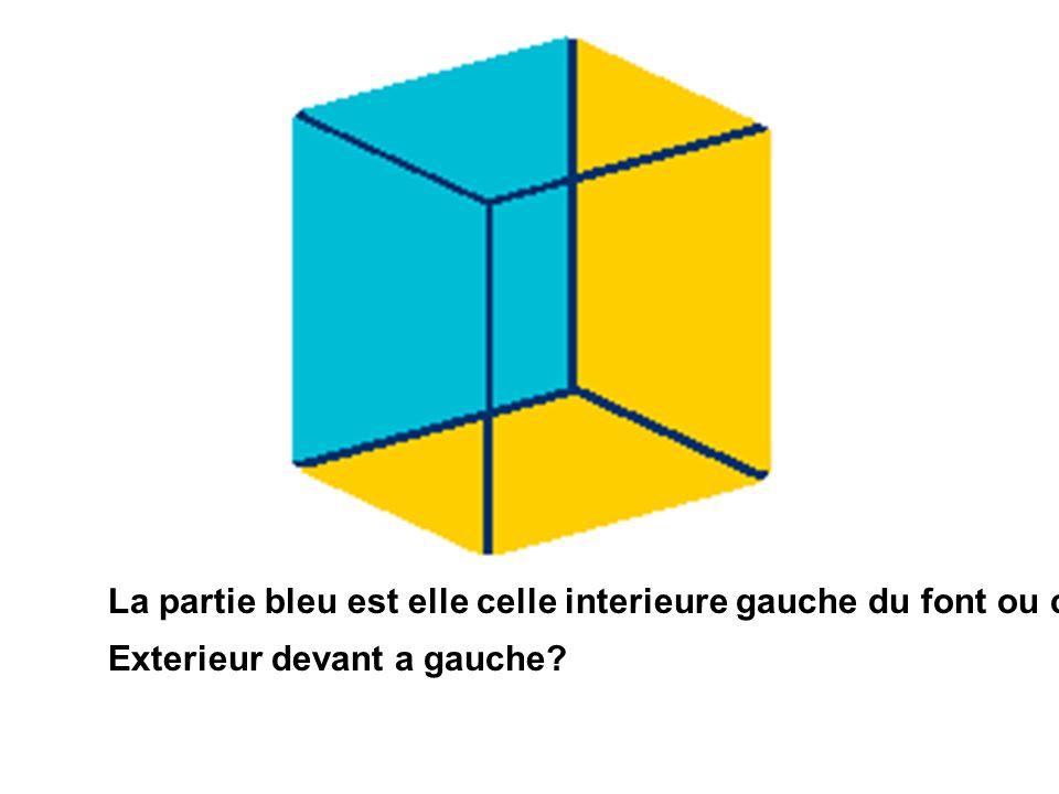 La partie bleu est elle celle interieure gauche du font ou celle Exterieur devant a gauche?