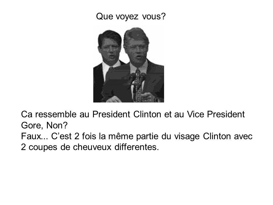 Ca ressemble au President Clinton et au Vice President Gore, Non? Faux... C'est 2 fois la même partie du visage Clinton avec 2 coupes de cheuveux diff