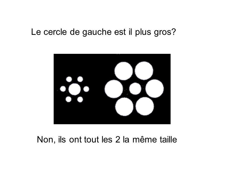 Non, ils ont tout les 2 la même taille Le cercle de gauche est il plus gros?