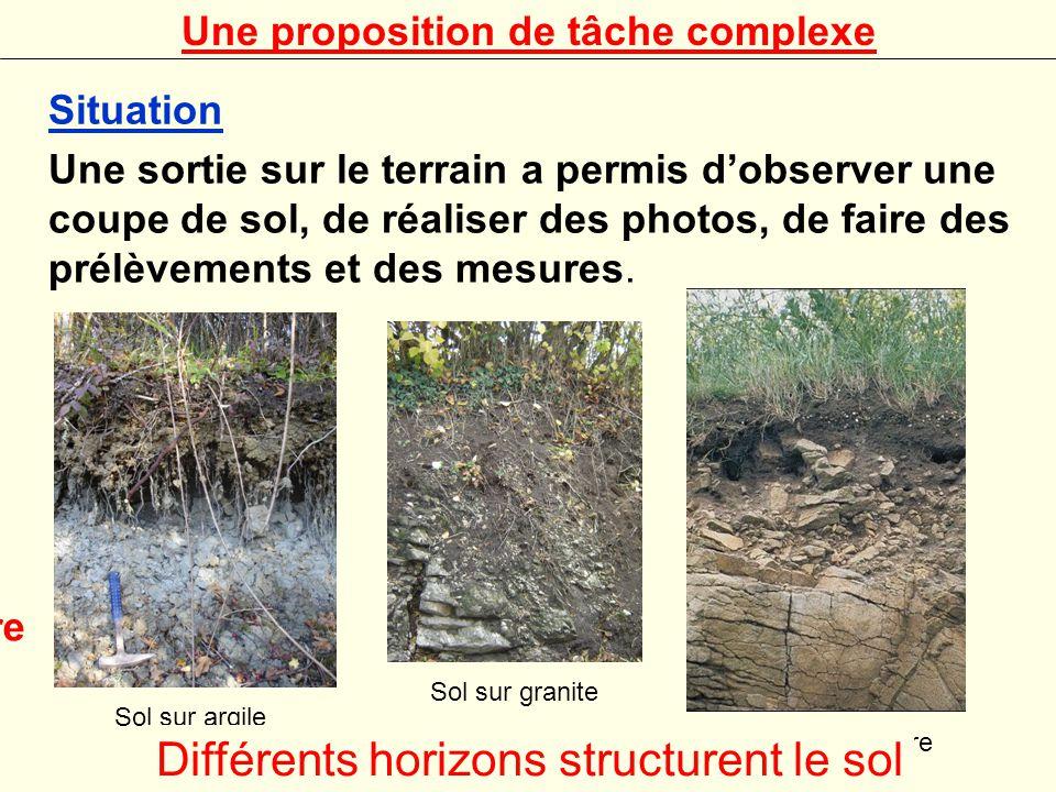 Problème(s) que l'on cherche à résoudre On cherche à savoir s'il existe des relations entre la roche qui forme le sous sol (clg) et le sol qui la surmonte ou alors si le sol est obtenu par l'activité des organismes(seconde, biodiversité) qui s'y trouvent.