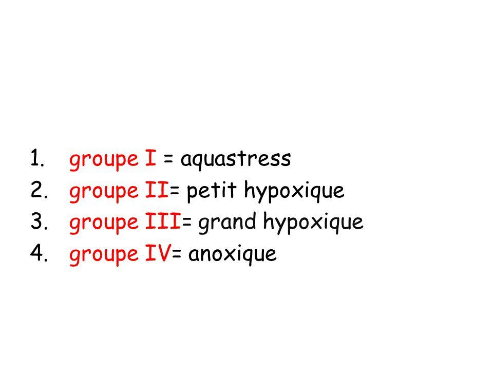 1. groupe I = aquastress 2. groupe II= petit hypoxique 3. groupe III= grand hypoxique 4. groupe IV= anoxique