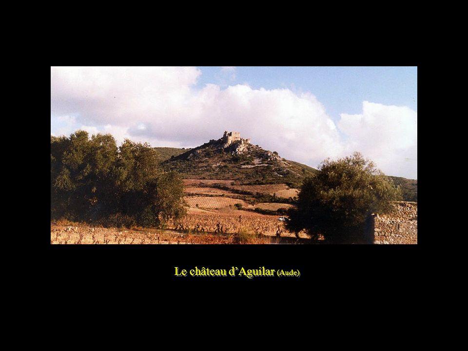La Cité de Carcassonne (Aude) - Les vignes en automne - La Cité de Carcassonne (Aude) - Les vignes en automne -