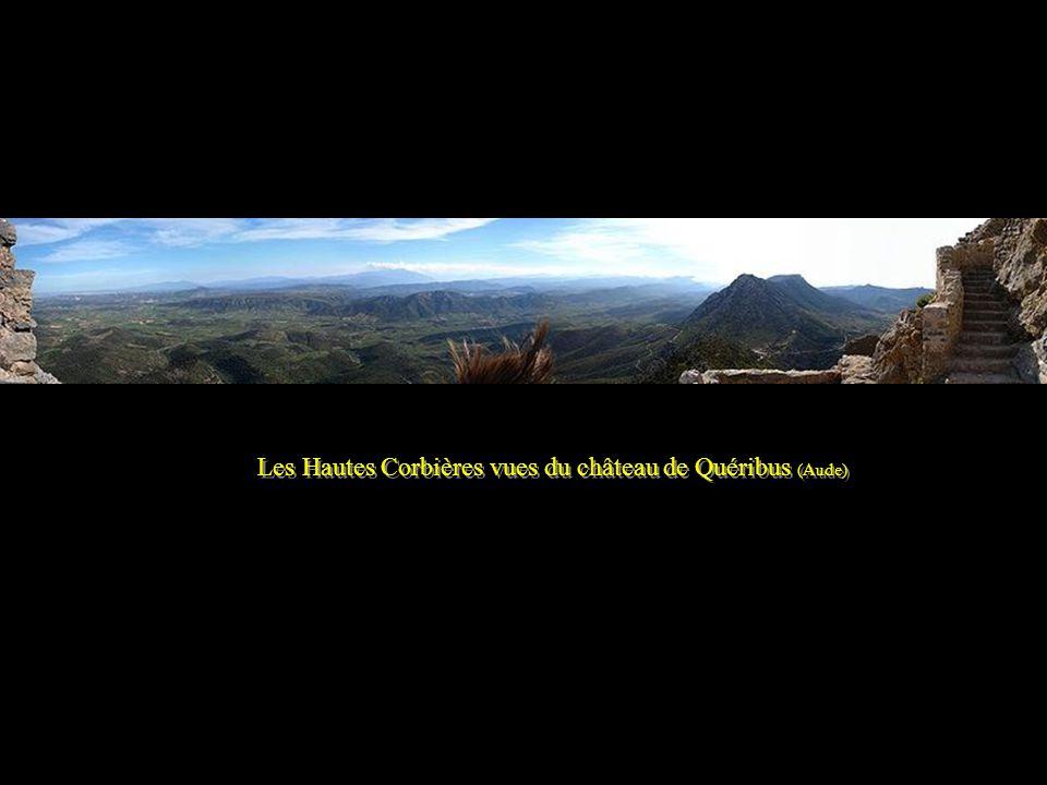 Château de Quéribus (Aude) -Hautes Corbières – - Ancienne forteresse Cathare - Château de Quéribus (Aude) -Hautes Corbières – - Ancienne forteresse Ca