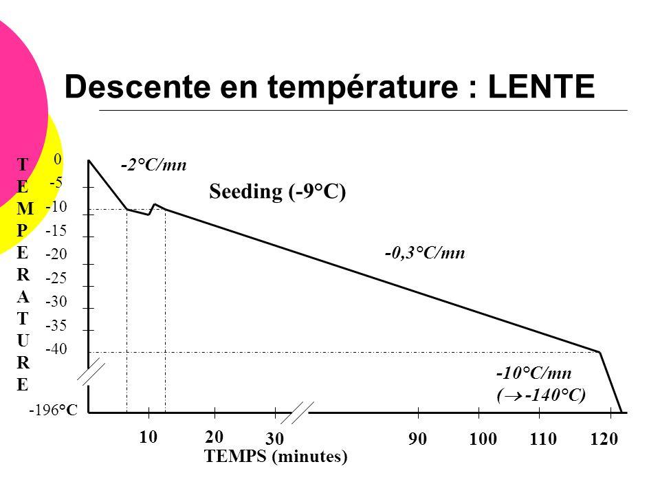 Descente en température : LENTE 0 -5 -10 -15 -20 -25 -30 -35 -40 -196°C TEMPERATURETEMPERATURE TEMPS (minutes) 1020 3090100110120 -2°C/mn -0,3°C/mn -1