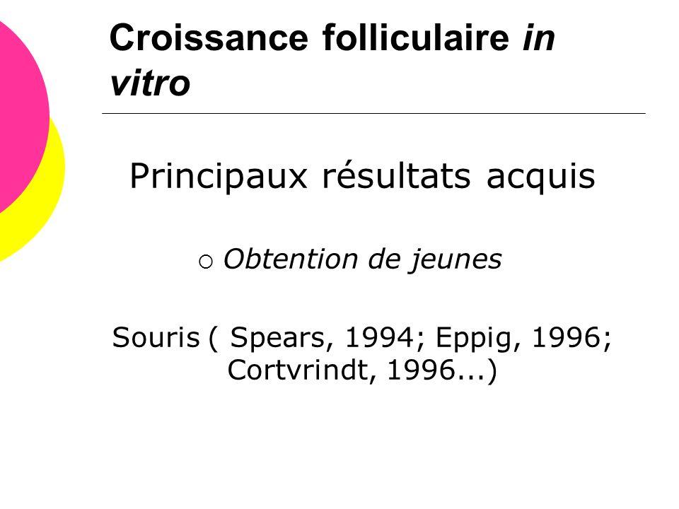 Principaux résultats acquis  Obtention de jeunes Souris ( Spears, 1994; Eppig, 1996; Cortvrindt, 1996...)