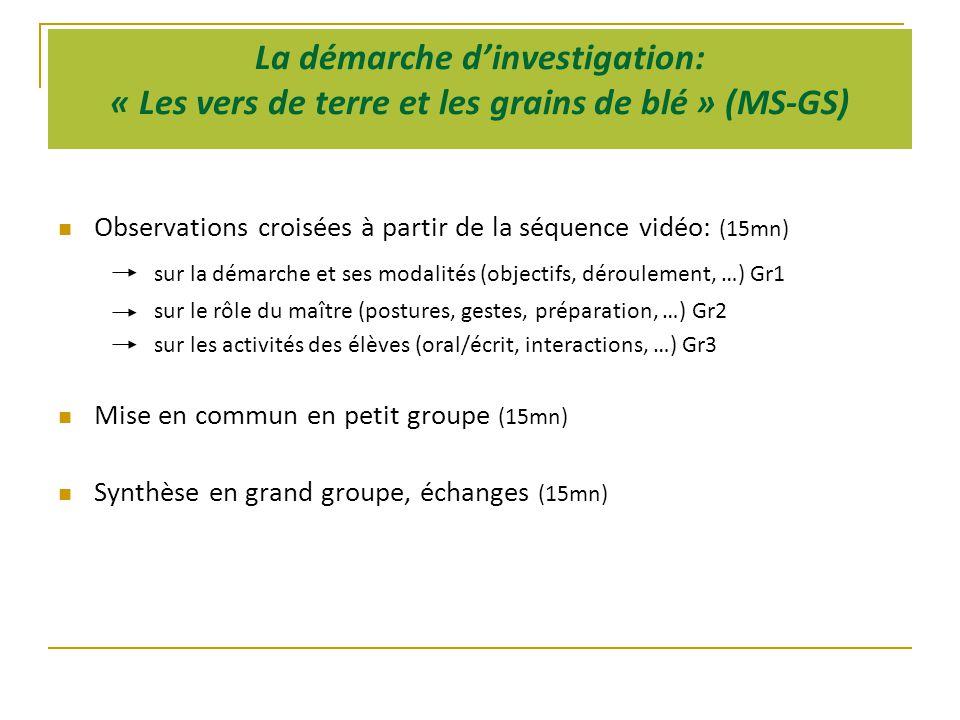La démarche d'investigation: « Les vers de terre et les grains de blé » (MS-GS)  Observations croisées à partir de la séquence vidéo: (15mn) sur la démarche et ses modalités (objectifs, déroulement, …) Gr1 sur le rôle du maître (postures, gestes, préparation, …) Gr2 sur les activités des élèves (oral/écrit, interactions, …) Gr3  Mise en commun en petit groupe (15mn)  Synthèse en grand groupe, échanges (15mn)