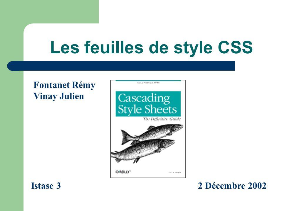 Les feuilles de style CSS Fontanet Rémy Vinay Julien Istase 32 Décembre 2002