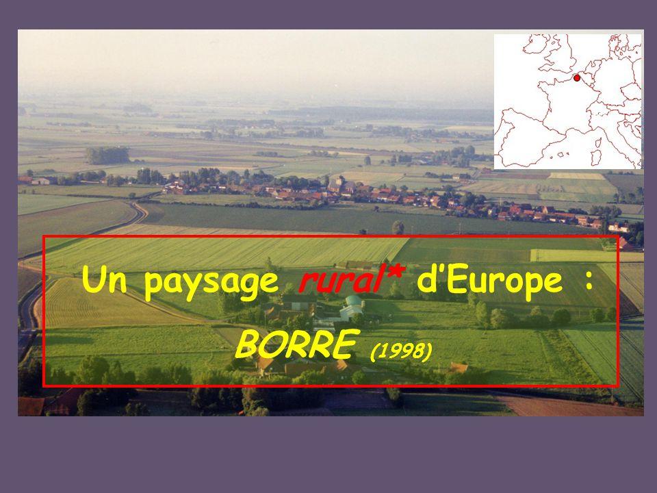 Pour voir Borre en vue Verticale :sur GOOGLE EARTH voir le fichier joint http://www.ppige-npdc.fr/http://www.ppige-npdc.fr/, http://www.geoportail.fr/http://www.geoportail.fr/