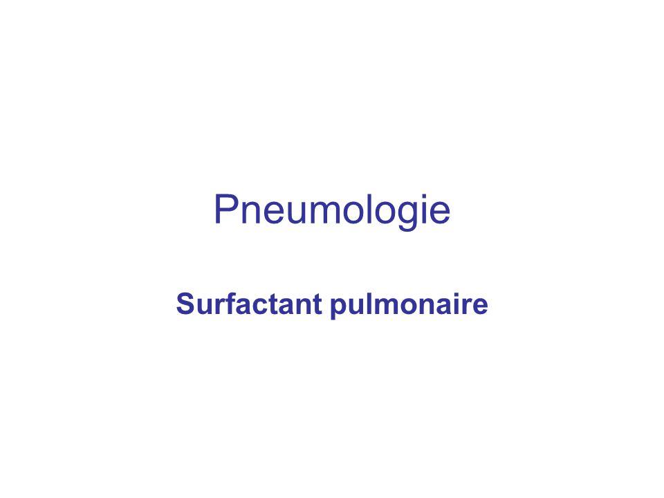 Pneumologie Surfactant pulmonaire
