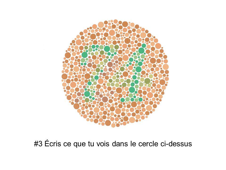 #3 Écris ce que tu vois dans le cercle ci-dessus