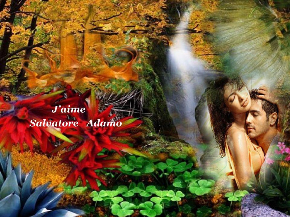 Et comme sur un coussin de plume Mon front se pose sur ton coeur Mirella 2014 La Dame En Bleu Images Du Net http://mirella-2.eklablog.com