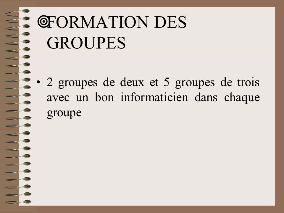  FORMATION DES GROUPES •2 groupes de deux et 5 groupes de trois avec un bon informaticien dans chaque groupe