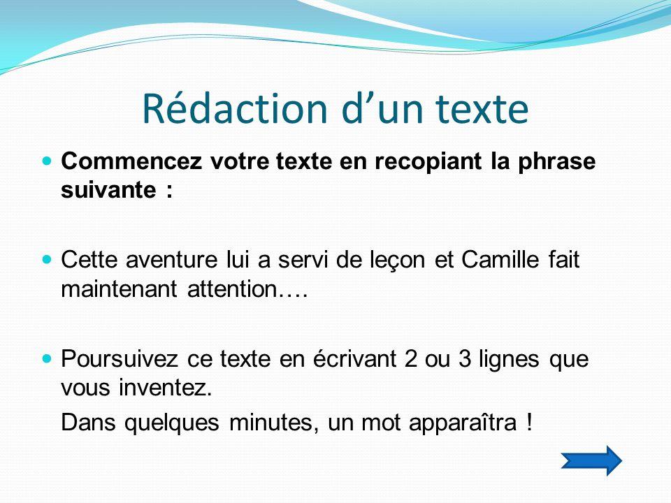 Rédaction d'un texte  Commencez votre texte en recopiant la phrase suivante :  Cette aventure lui a servi de leçon et Camille fait maintenant attention….