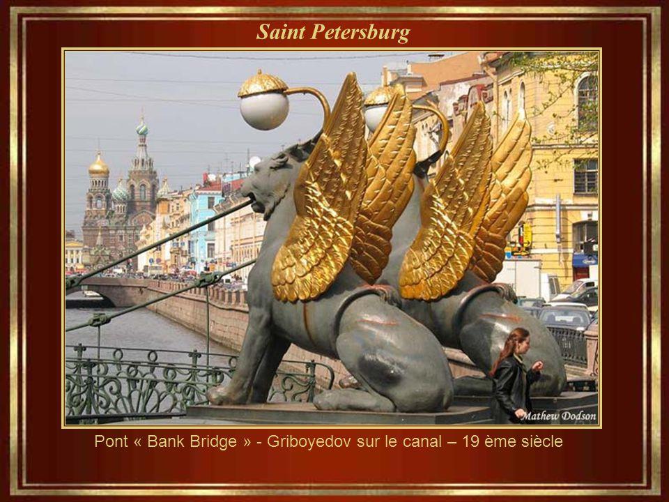Saint Petersburg La rivière des neiges et les Douze Collèges de l'Université de Saint-Pétersbourg