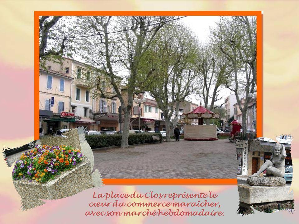 Cavaillon est une ville située dans le Vaucluse, au sud d'Avignon..
