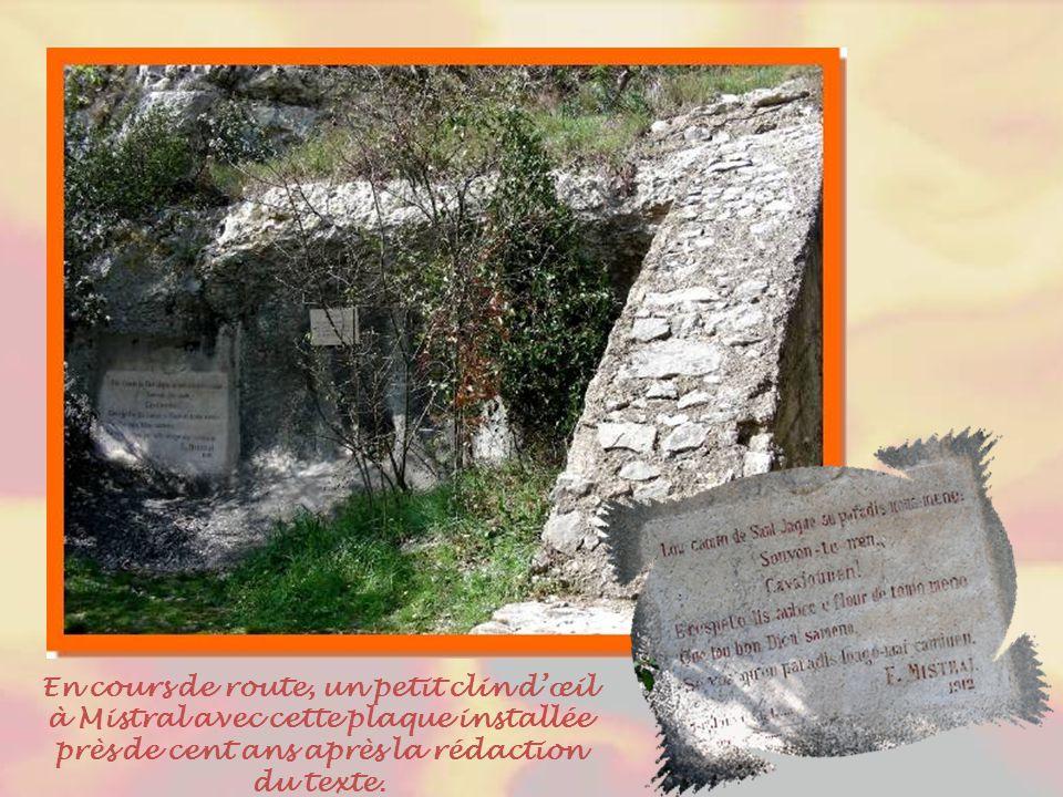 Entre ville et colline, on rencontre une petite plantation d'oliviers, « l'olivette ».