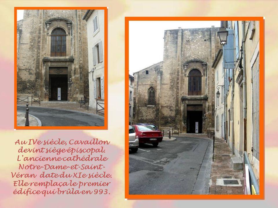 Derrière ces arcs, la colline Saint-Jacques qui fut habitée par une fédération de peuples gaulois, les Cavares, dont la ville tire son nom. L'écoinçon