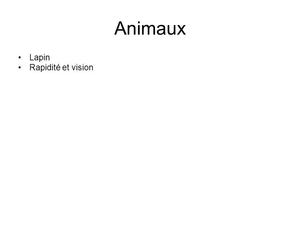Animaux •Lapin •Rapidité et vision