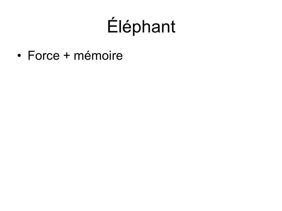 Éléphant •Force + mémoire