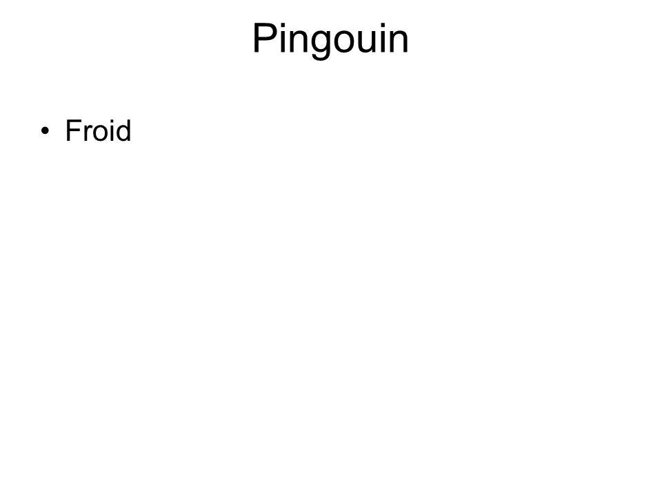 Pingouin •Froid