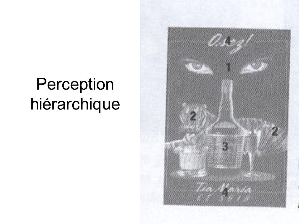 Perception hiérarchique