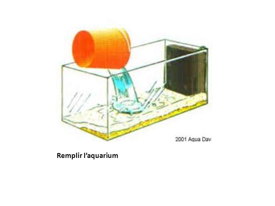 Remplir l'aquarium