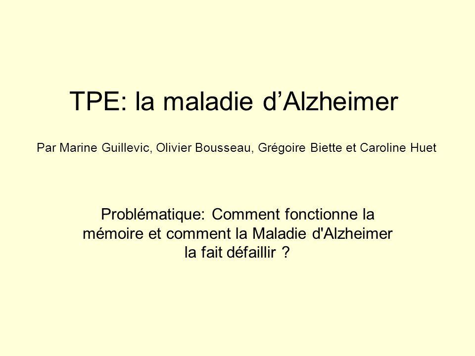 TPE: la maladie d'Alzheimer Problématique: Comment fonctionne la mémoire et comment la Maladie d'Alzheimer la fait défaillir ? Par Marine Guillevic, O