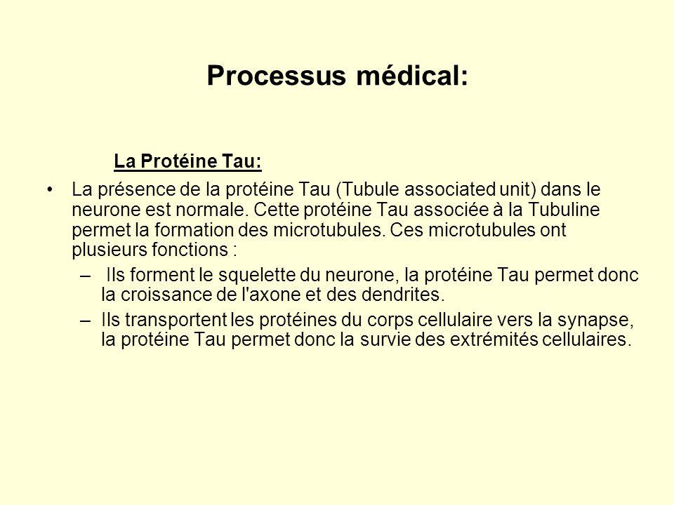 Processus médical: La Protéine Tau: •La présence de la protéine Tau (Tubule associated unit) dans le neurone est normale. Cette protéine Tau associée