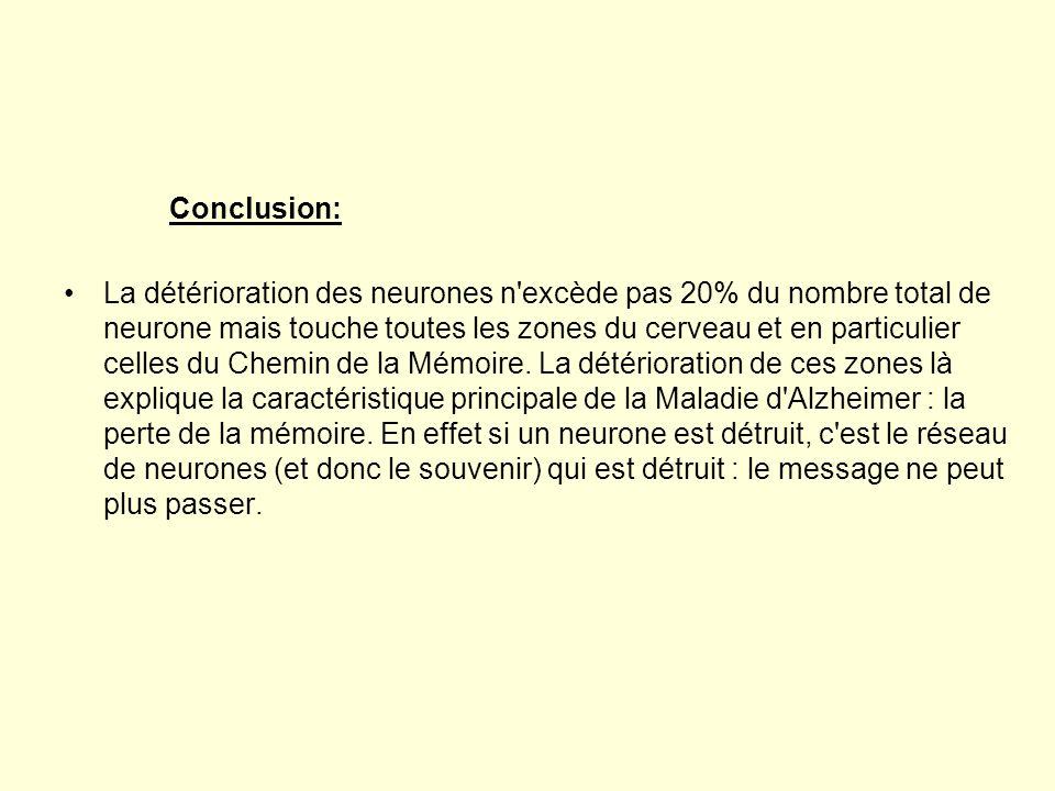 Conclusion: •La détérioration des neurones n'excède pas 20% du nombre total de neurone mais touche toutes les zones du cerveau et en particulier celle