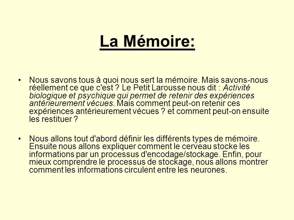 La Mémoire: •Nous savons tous à quoi nous sert la mémoire. Mais savons-nous réellement ce que c'est ? Le Petit Larousse nous dit : Activité biologique