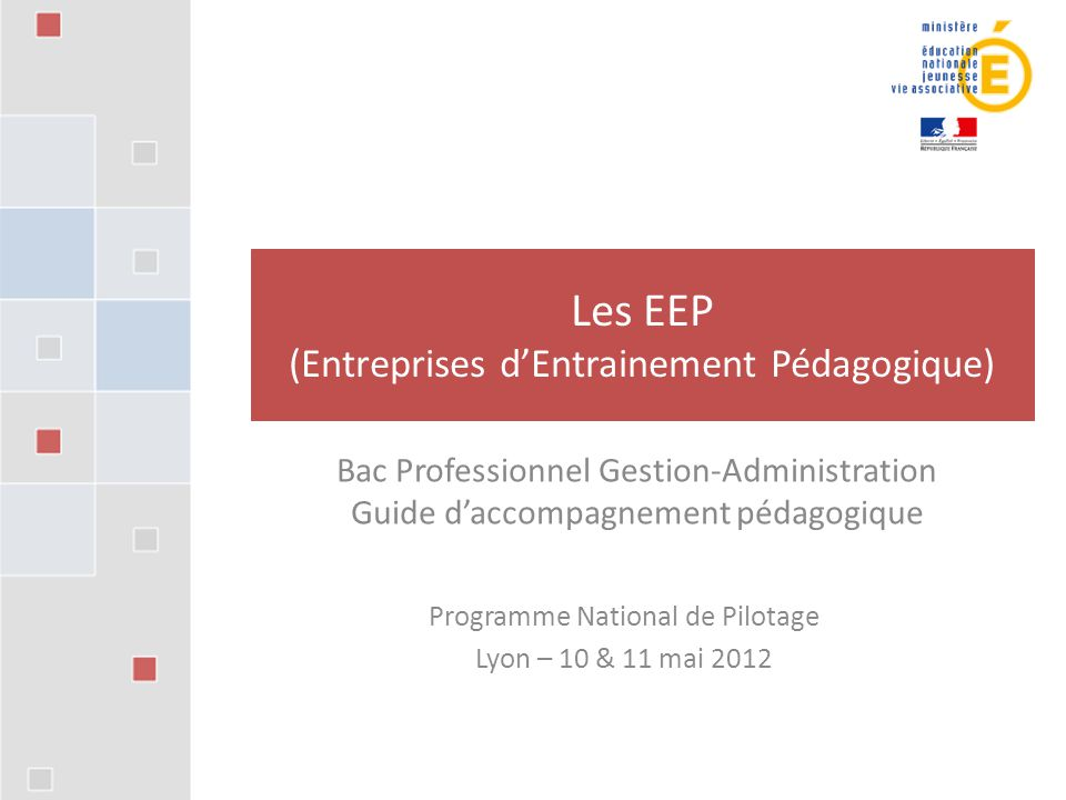 Programme National de Pilotage Lyon – 10 & 11 mai 2012 Les EEP (Entreprises d'Entrainement Pédagogique) Bac Professionnel Gestion-Administration Guide d'accompagnement pédagogique