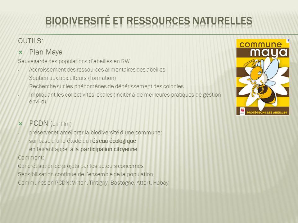 OUTILS:  Plan Maya Sauvegarde des populations d'abeilles en RW - Accroissement des ressources alimentaires des abeilles - Soutien aux apiculteurs (formation) - Recherche sur les phénomènes de dépérissement des colonies - Impliquant les collectivités locales (inciter à de meilleures pratiques de gestion enviro)  PCDN ( cfr film) - préserver et améliorer la biodiversité d'une commune: - sur base d'une étude du réseau écologique - en faisant appel à la participation citoyenne Comment: Concrétisation de projets par les acteurs concernés Sensibilisation continue de l'ensemble de la population Communes en PCDN: Virton, Tintigny, Bastogne, Attert, Habay