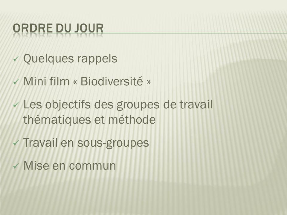  Quelques rappels  Mini film « Biodiversité »  Les objectifs des groupes de travail thématiques et méthode  Travail en sous-groupes  Mise en commun