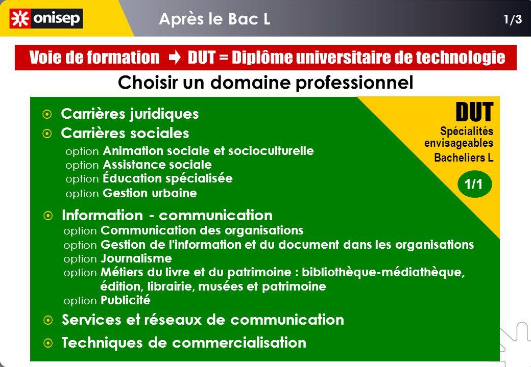 Choisir un domaine professionnel  Carrières juridiques  Carrières sociales option Animation sociale et socioculturelle option Assistance sociale opt