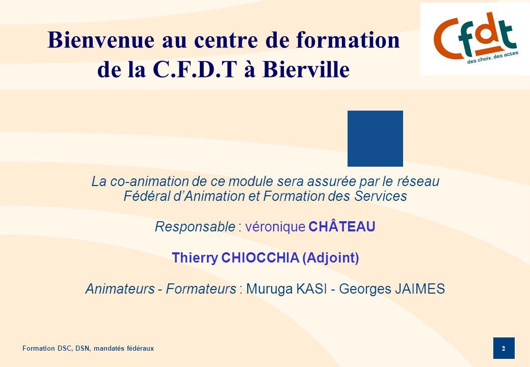 Formation DSC, DSN, mandatés fédéraux 2 Bienvenue au centre de formation de la C.F.D.T à Bierville La co-animation de ce module sera assurée par le ré