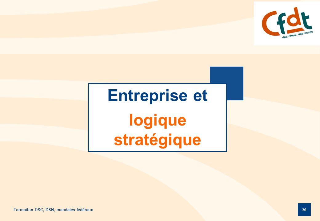 Formation DSC, DSN, mandatés fédéraux 20 Entreprise et logique stratégique