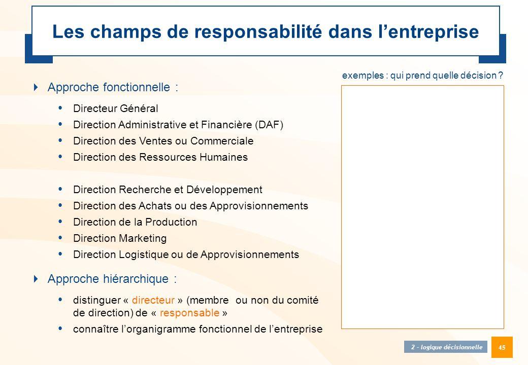 45 Les champs de responsabilité dans l'entreprise  Approche fonctionnelle : • Directeur Général • Direction Administrative et Financière (DAF) • Dire