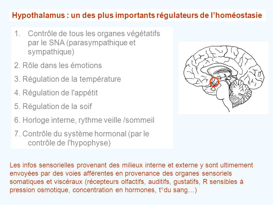 Hypothalamus : un des plus importants régulateurs de l'homéostasie 1.Contrôle de tous les organes végétatifs par le SNA (parasympathique et sympathiqu