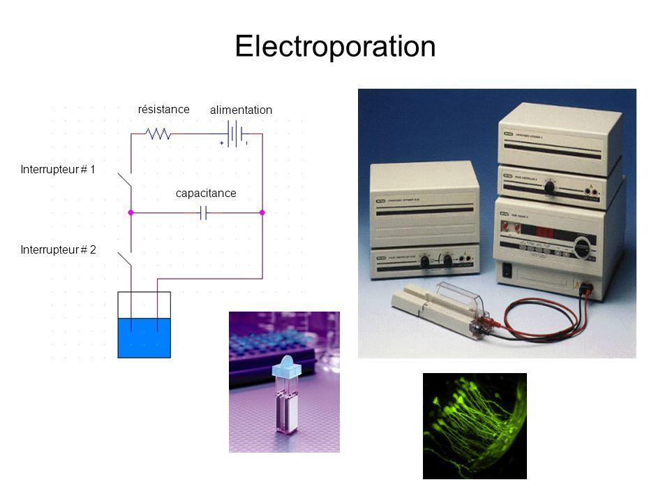 Interrupteur # 1 Interrupteur # 2 résistance alimentation capacitance
